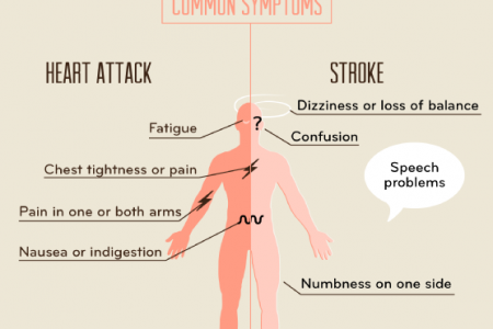 Decoding the Symptoms: Heart Attack vs. Stroke Infographic