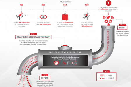 Defining Fast Data: Turning Insight into Action in Real-Time Infographic