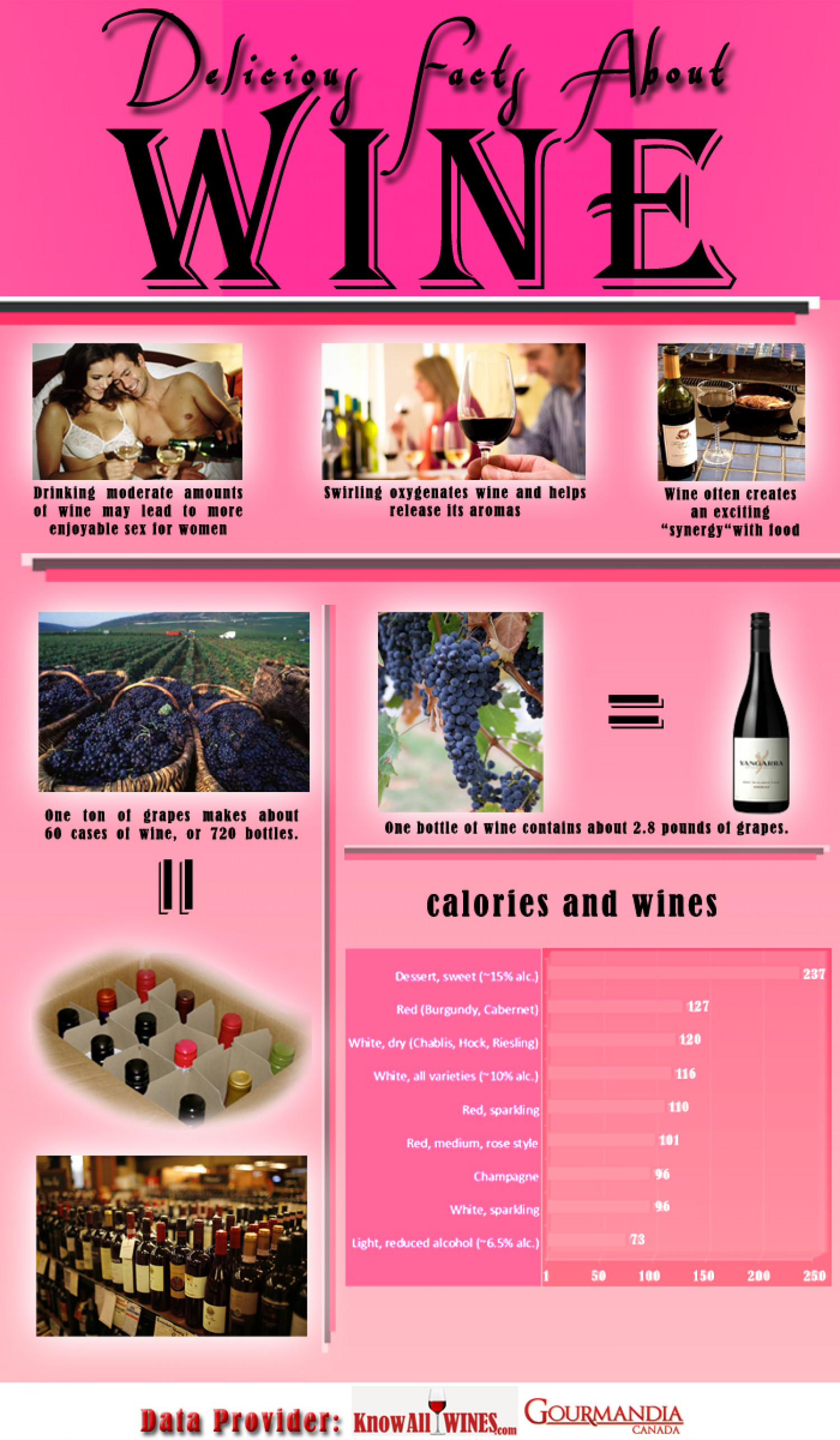 Delicious Facts About Wine Infographic