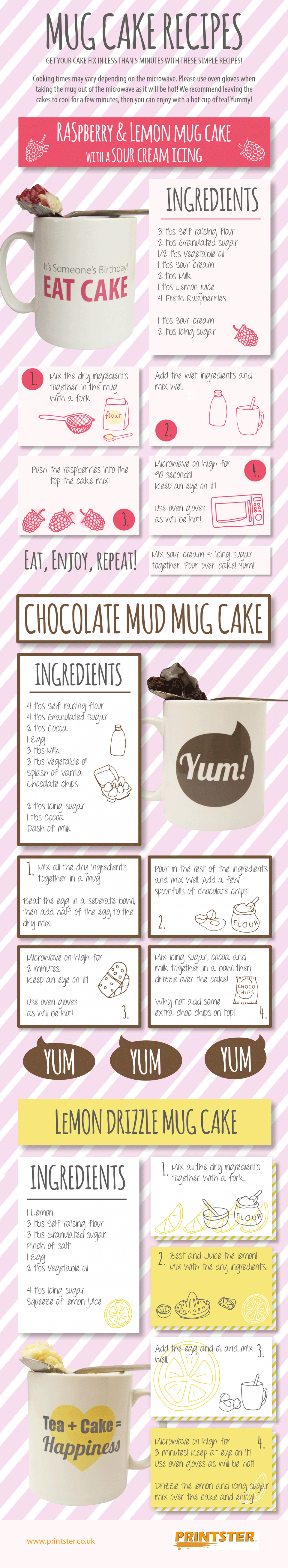 Mug Cake Recipes Infographic