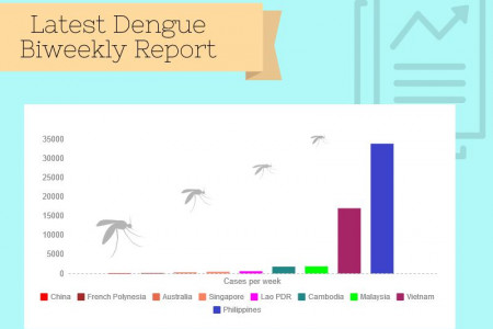 Dengue Cases Around the Globe Infographic