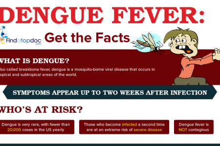 What is Dengue Fever? Facts about Dengue Fever Infographic