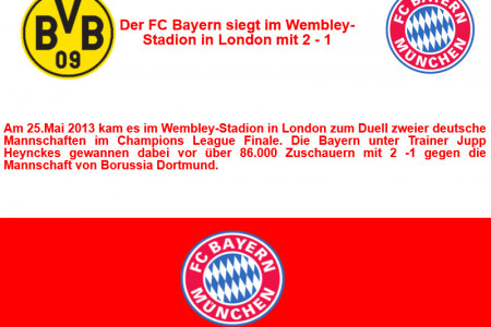 Der FC Bayern in der Champions League 3 Infographic
