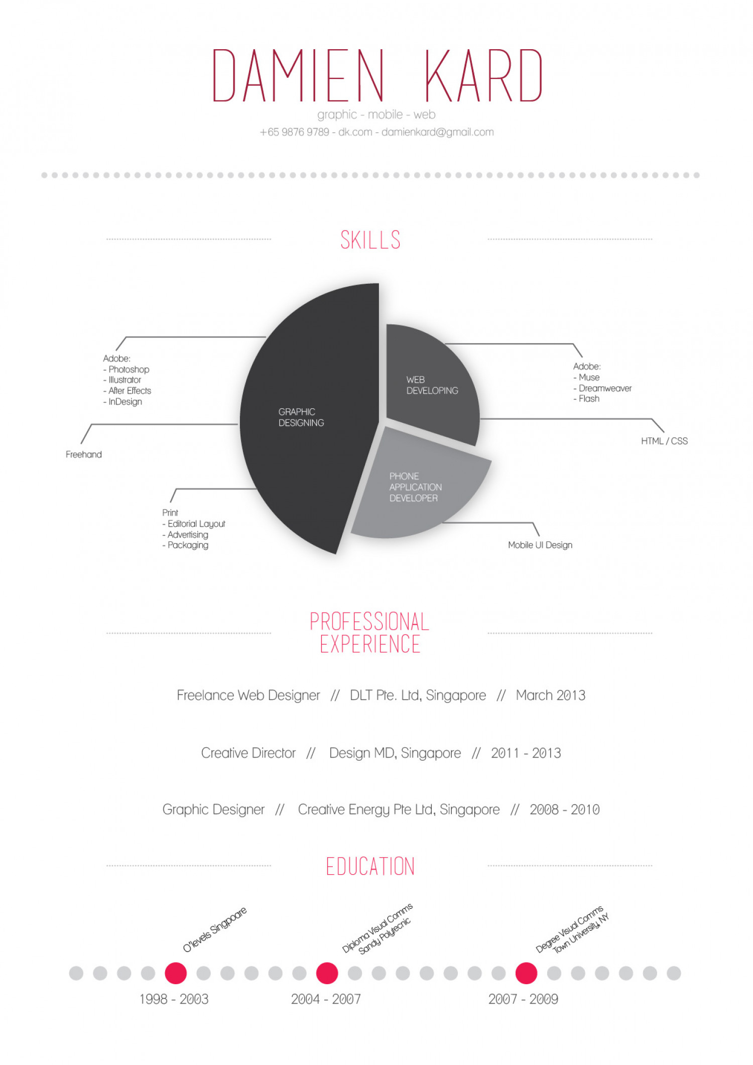Designer's Simple Infographic Resume Infographic