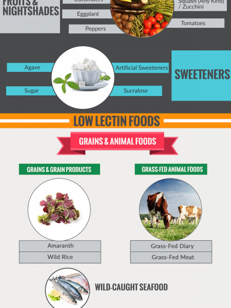 Dietary Lectins and Your Health Infographic