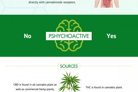 Difference Between THC & CBD and Their Unique Benefits Infographic