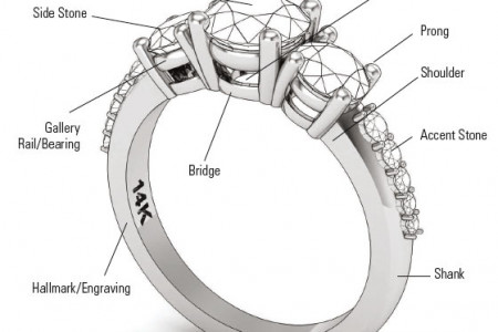 Different Parts of Finger Ring Infographic