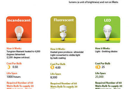 Different Types of Lighting bulbs and their facts Infographic