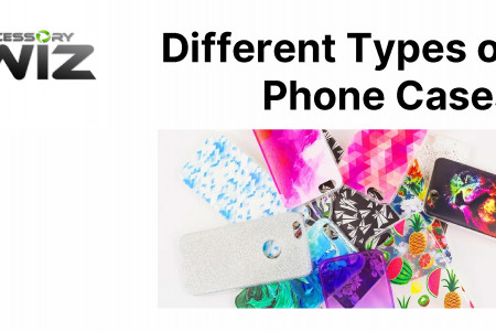 Different Types of Phone Cases Infographic