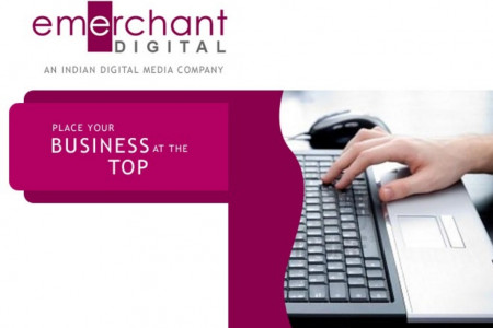Digital Marketing Company in Hyderabad Infographic