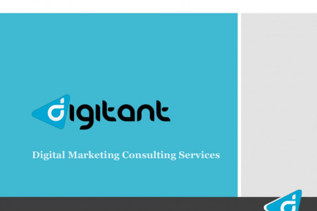 Digital Marketing Consulting Services : Digitant Infographic