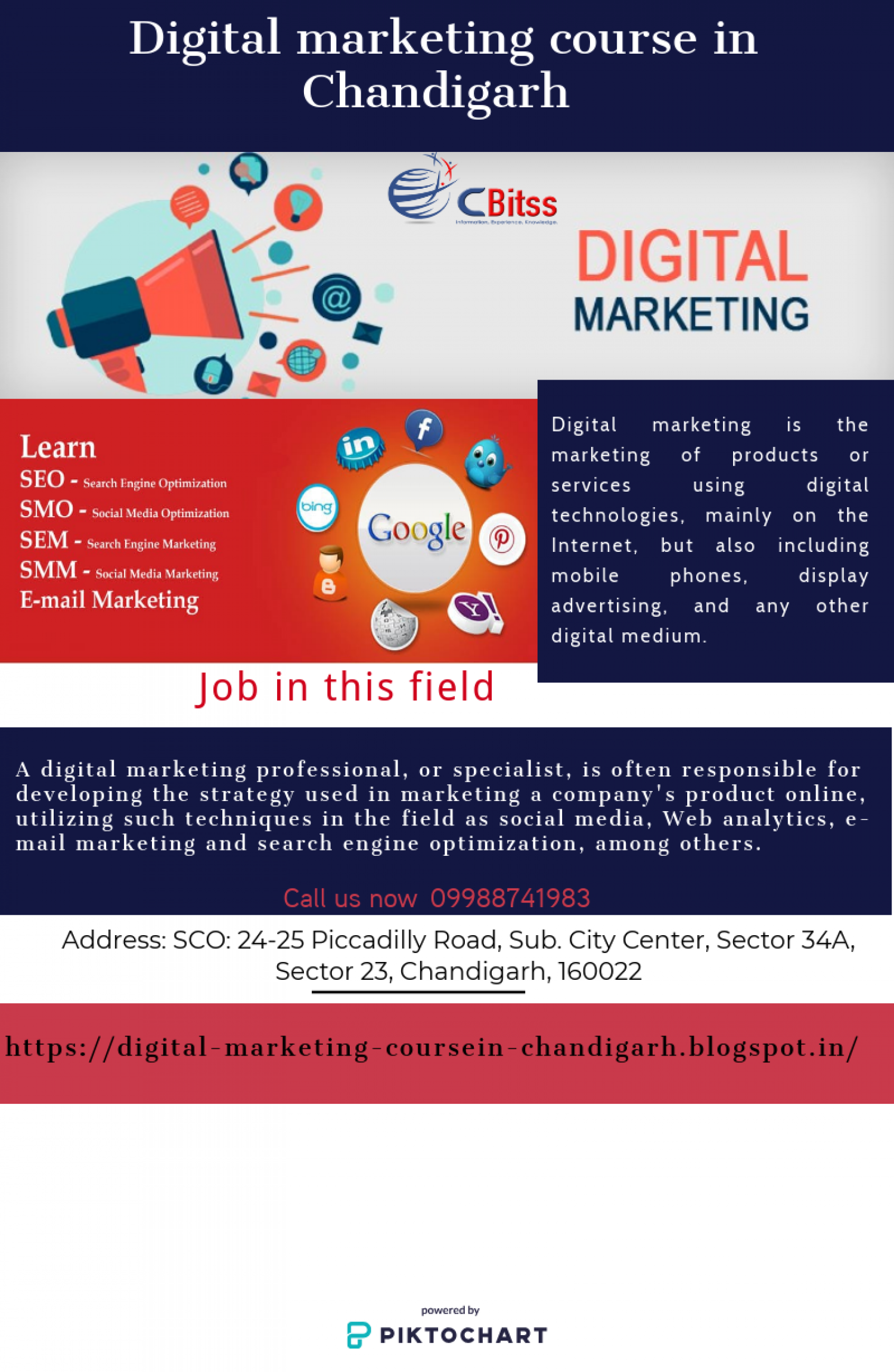 Digital Marketing course in Chandigarh Infographic