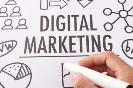 Digital Marketing Role In Startup Business To Make Big Infographic