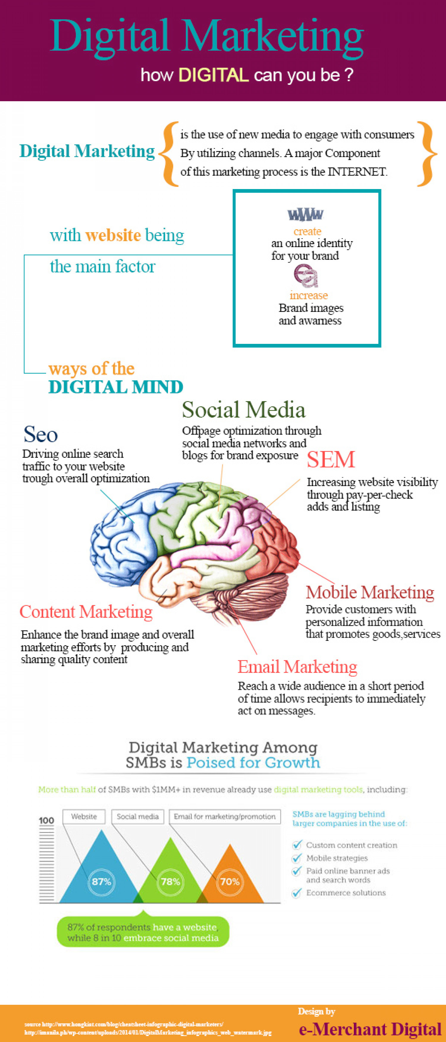 Digital Marketing Trends for Small and Medium Businesses Infographic
