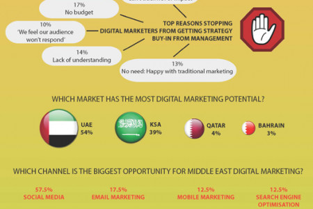 Digital Marketing Trends in the Middle East - 2011 Infographic