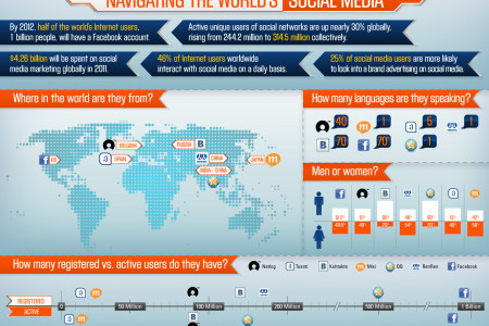 Digital Passport: Navigating the World's Social Media Infographic