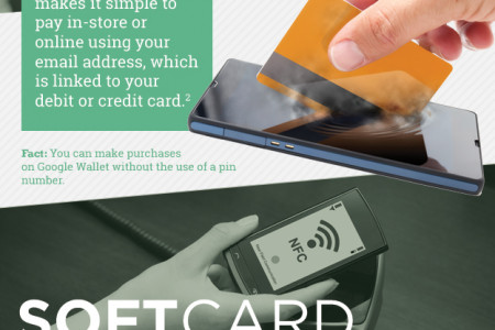 Digital Wallets: The Future of Payments Infographic
