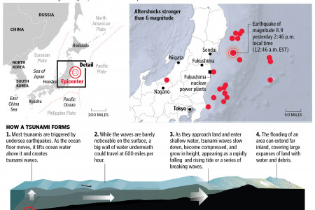 Disaster in Northeast Japan Infographic