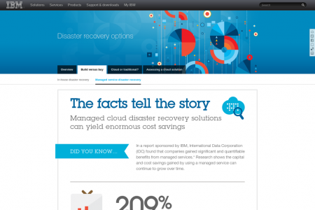Disaster Recovery: The facts tell the story Infographic