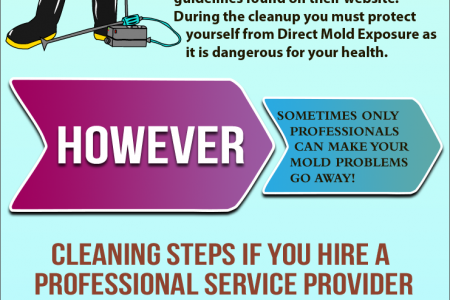 Discover How to Deal with Mold Infographic