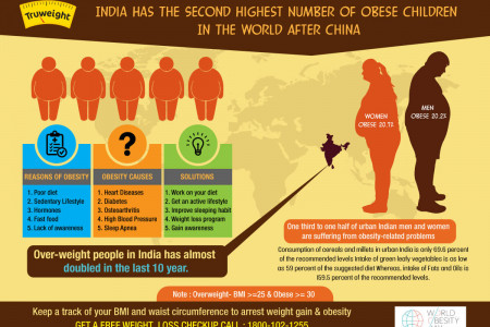 Discover The 6 Causes Of Obesity & The 3 Ways To Fight It Infographic