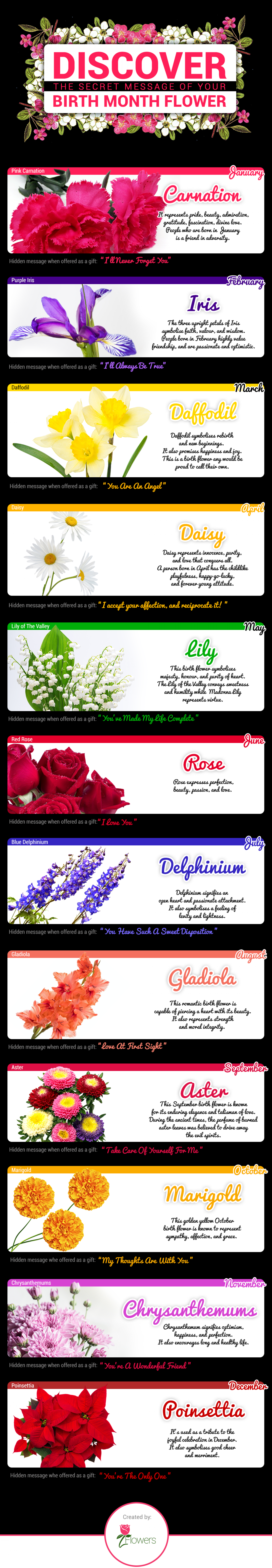Discover the Secret Message of Your Birth Month Flower Infographic