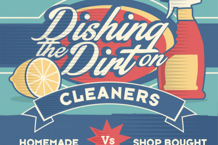 Dishing the Dirt: Homemade Vs Store-Bought Cleaners Infographic