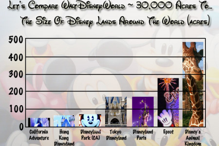 Disneyland: Maintaining Walt Disney World  Infographic