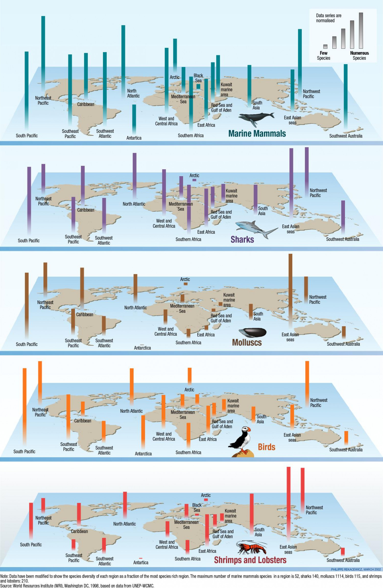 Diversity of Species Infographic