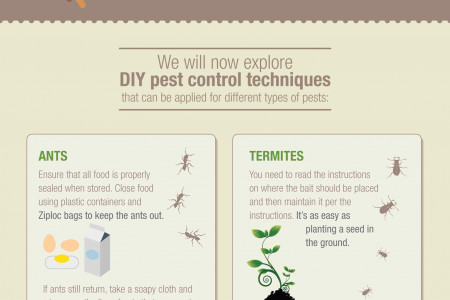 DIY Pest Control Infographic Infographic