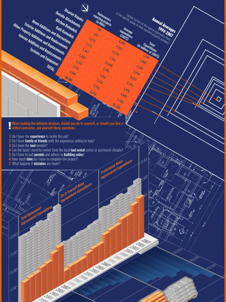 Do It Yourself or Hire A Pro? Infographic