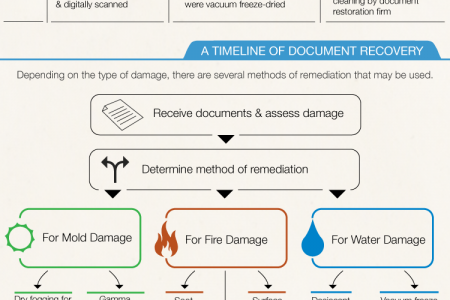 Document Restoration 101 Infographic