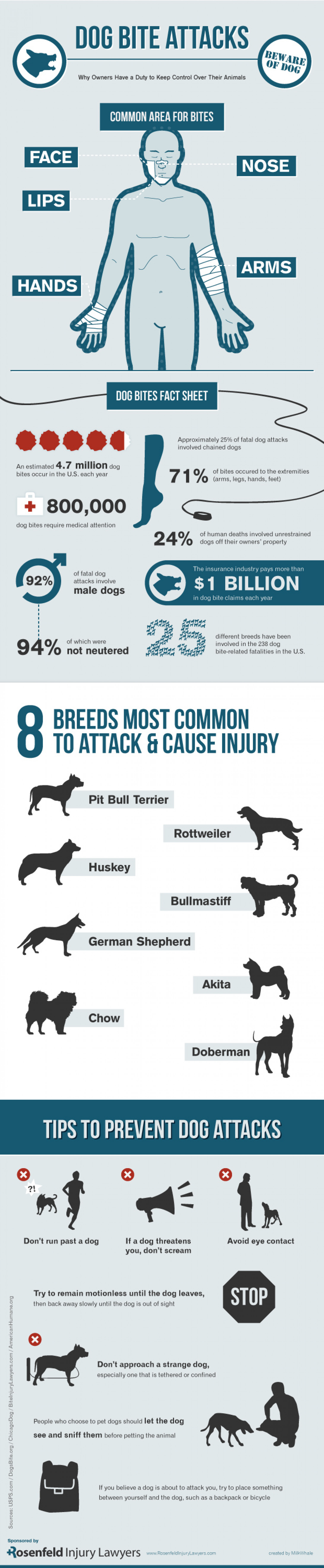 Dog Bite Attacks Infographic