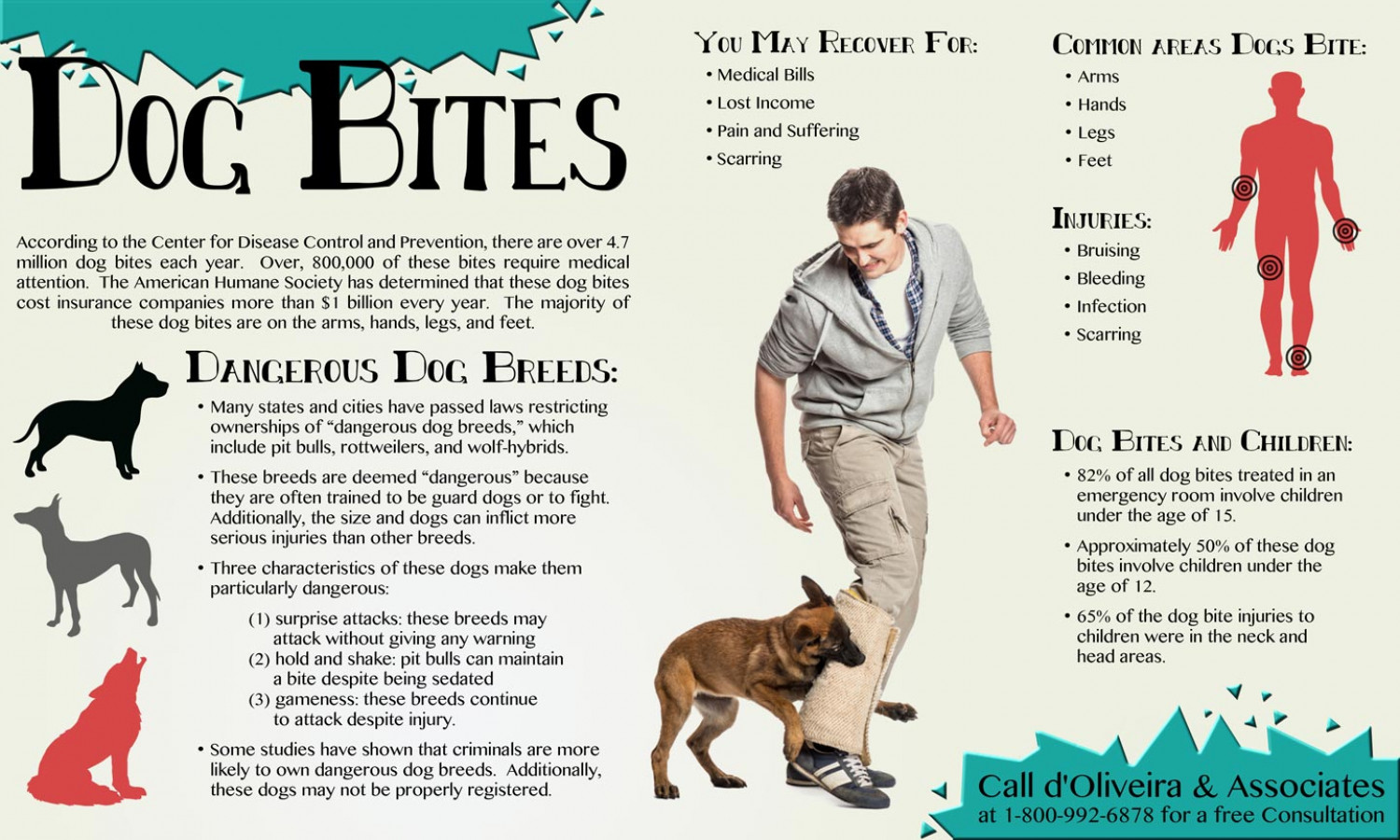 Dog Bite Law Breed Specific Laws