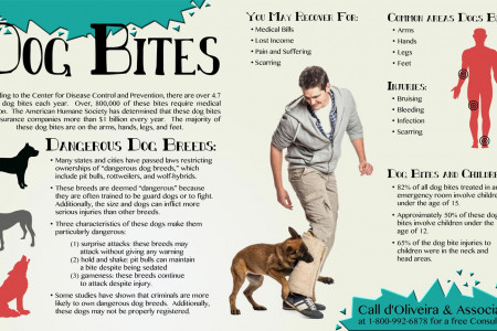 Dog Bites Infographic