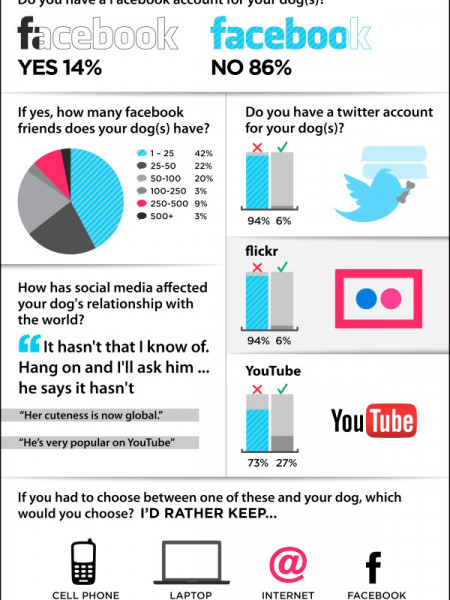 Dog: Man's Best Facebook Friend, Too?  Infographic