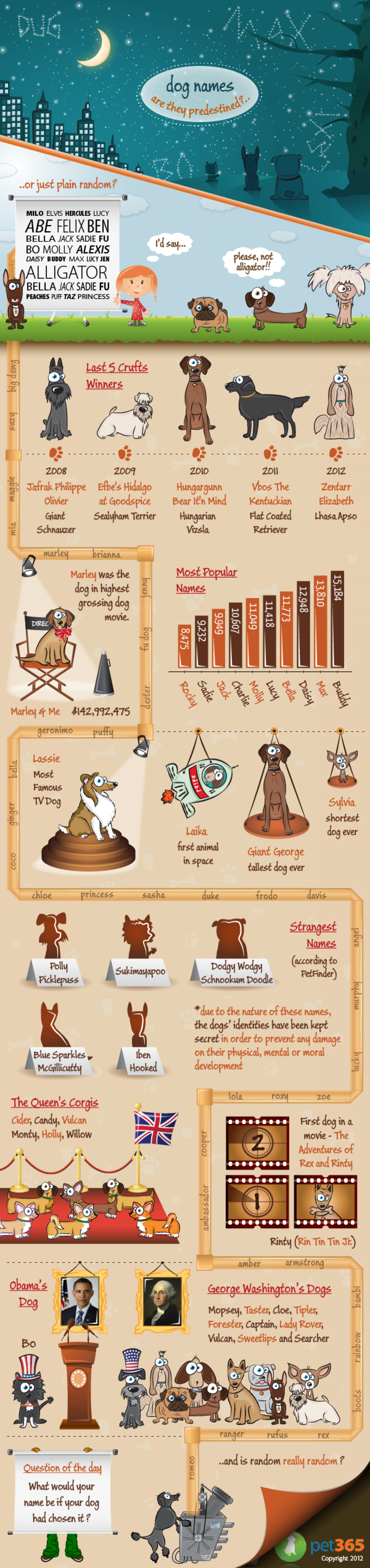 Dog Names - Crazy to Sublime Infographic