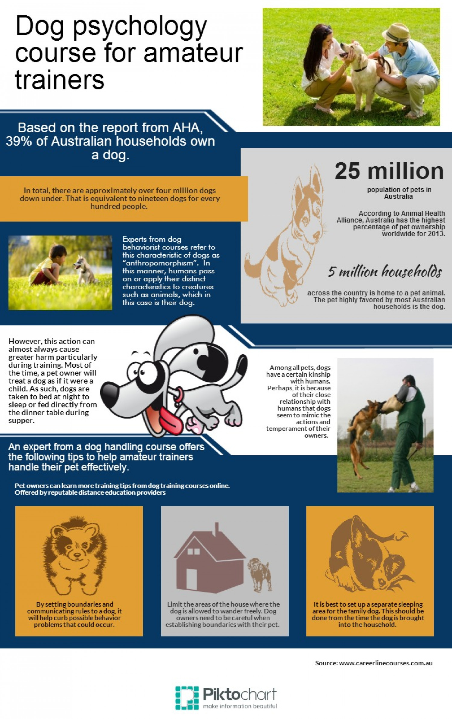 Dog Training Courses in Australia Infographic
