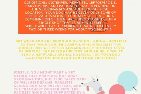 Dog Vaccinations - How To Choose The Right Animal Hospital Infographic