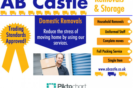 Domestic Removers Infographic