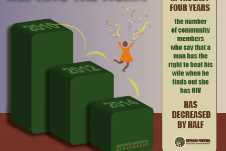 Domestic Violence in Haiti Infographic