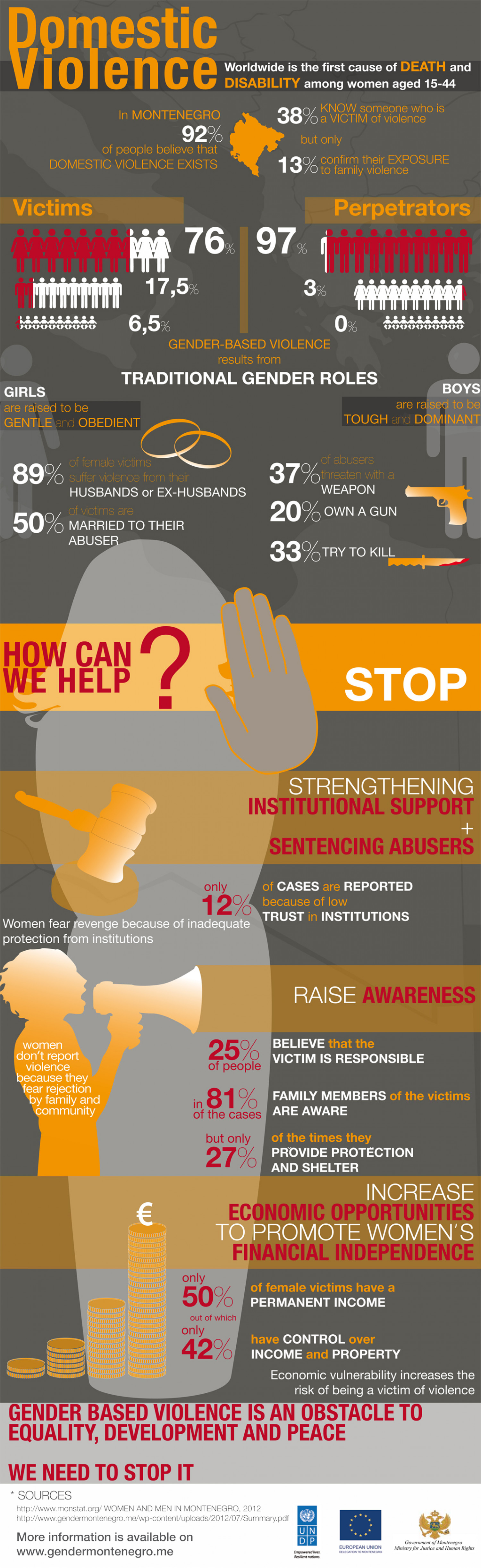 Domestic Violence in Montenegro Infographic
