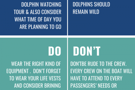 Do's & Don'ts When Going For A Dolphin CruiseTour Infographic