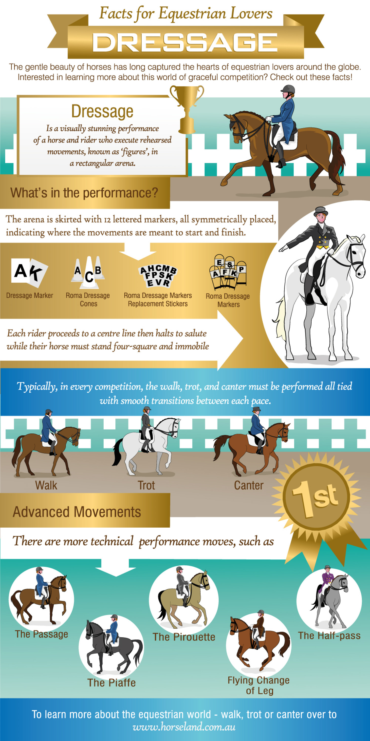 Dressage: Facts for Equestrian Lovers Infographic