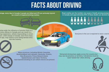 Driving School -Facts About Driving  Infographic