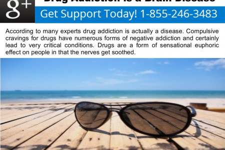 Drug Addiction is a Brain Disease Infographic