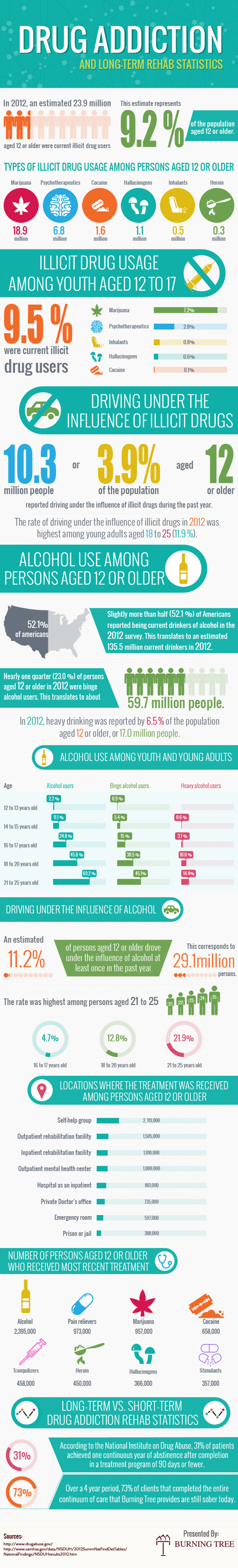 Drug Addiction Statistics and Long Term Rehab Program Infographic