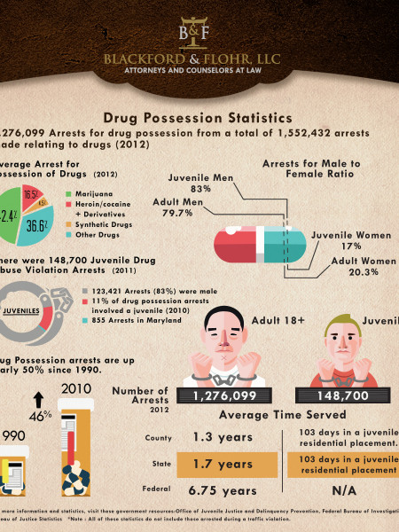 Drug Possession Statistics Infographic