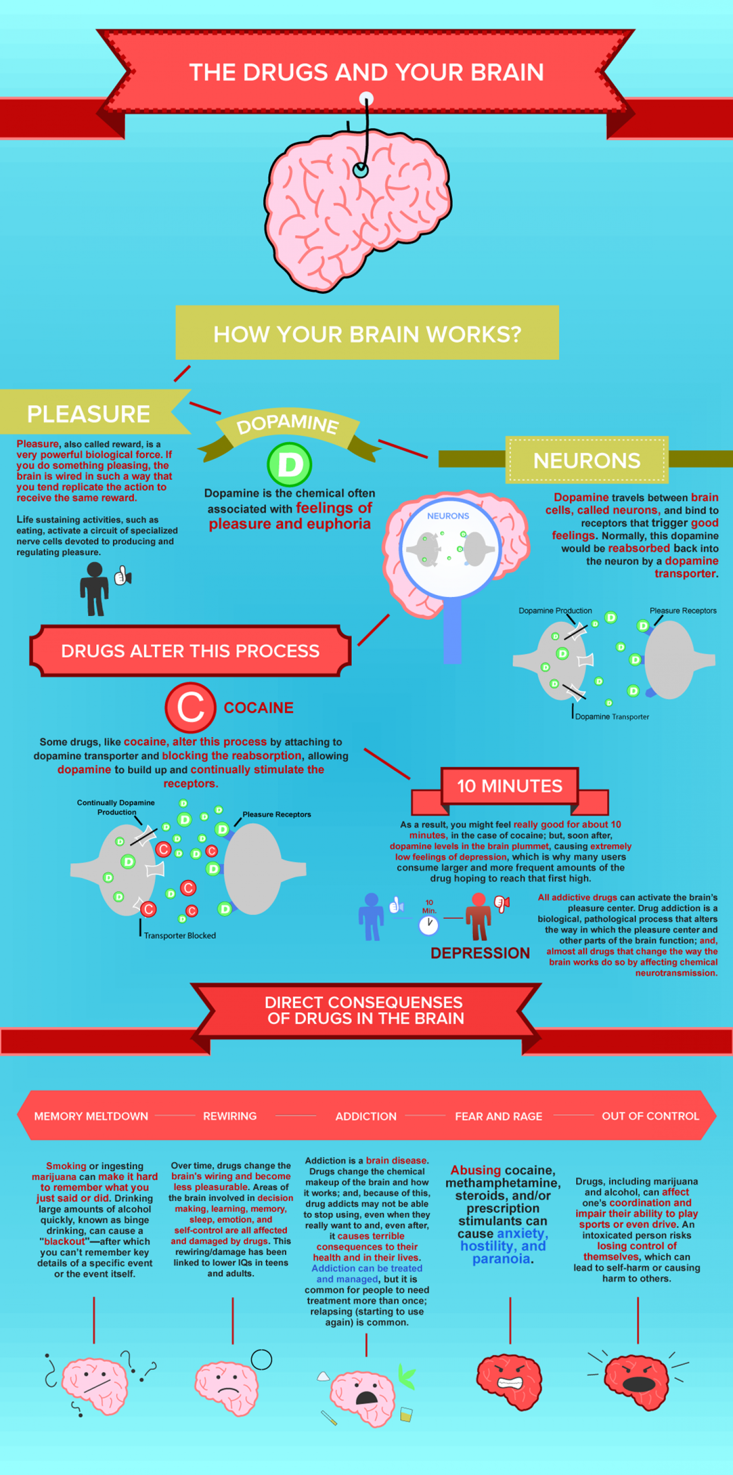 Drugs And Your Brain Infographic