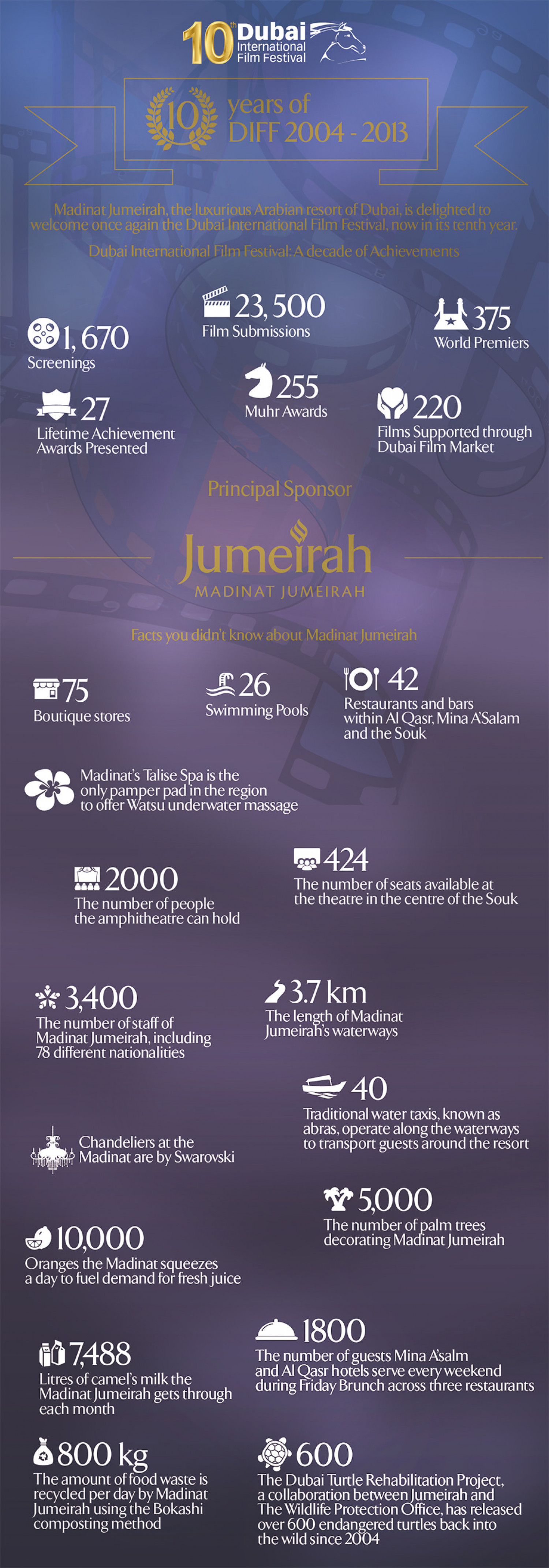 Dubai International Film Festival Infographic